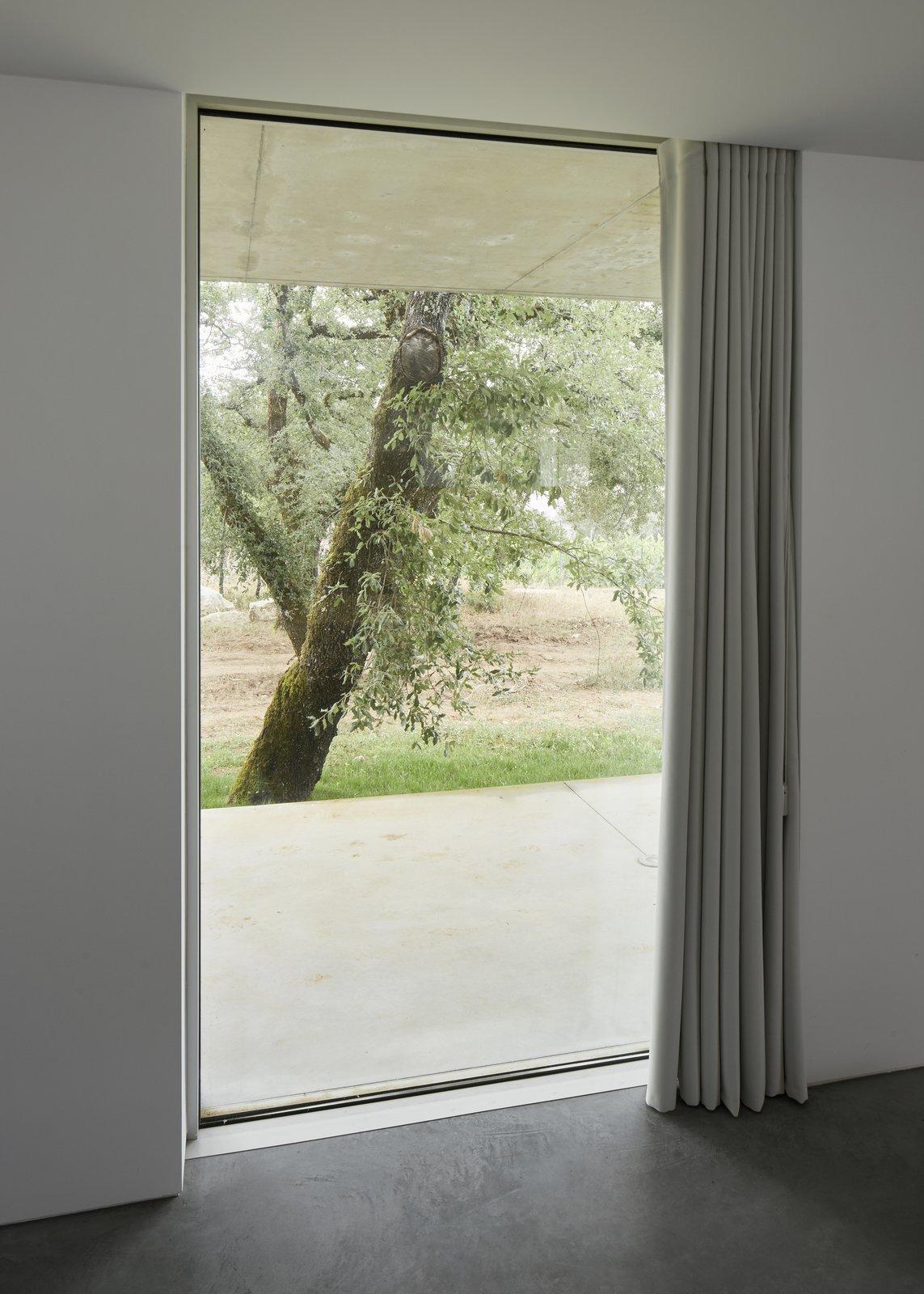 Windows  Fanu House