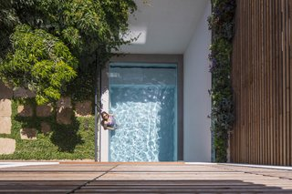 In Tel Aviv, a small pool and garden were carved out of the backyard of this renovated townhouse. White walls reflect the powerful sun rays while trees and greenery provide shade.