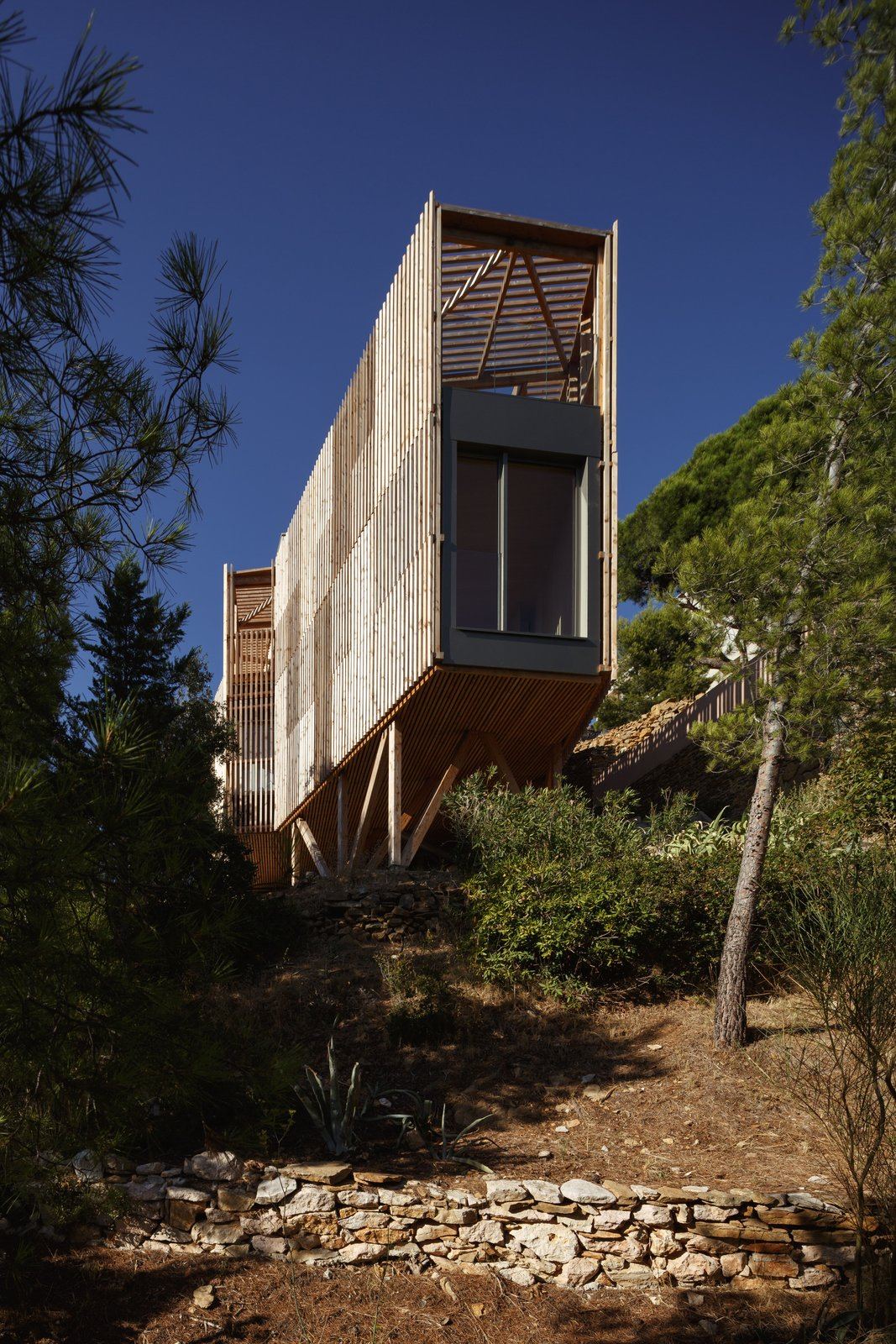 Outdoor, Trees, Back Yard, Shrubs, Gardens, Walkways, and Boulders  The KGET in Marseille