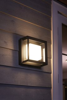 Philips Hue's new outdoor ceiling light from its Econic range arrives in March for $130.