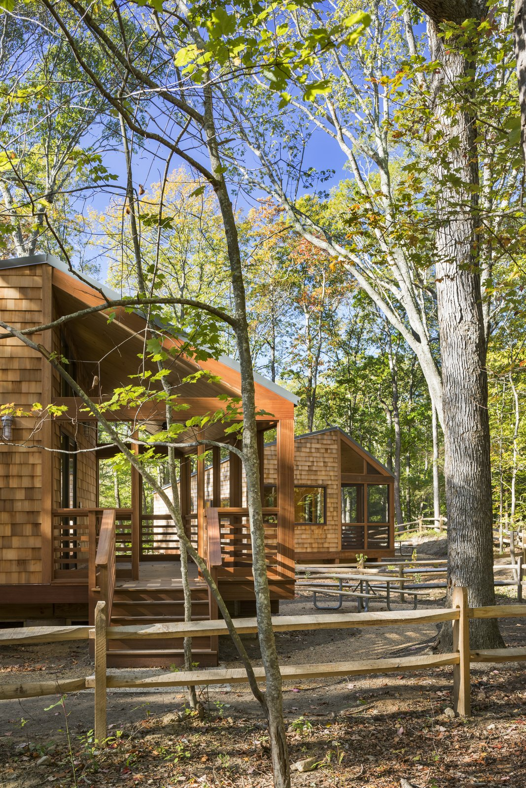 Outdoor, Woodland, Shrubs, Wood Fences, Wall, Wood Patio, Porch, Deck, Small Patio, Porch, Deck, and Trees  Photo 3 of 7 in A Long Island Campground Gets a Bunch of New Modern Cabins