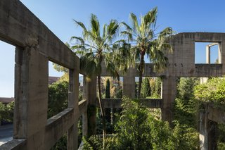 Exposed concrete walls and lush plantings create the feeling of a modern-day ruin.