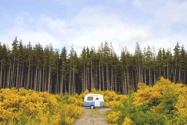 Vans, Trailers, Campers, Oh My! Here's All You Need to Know About #Vanlife
