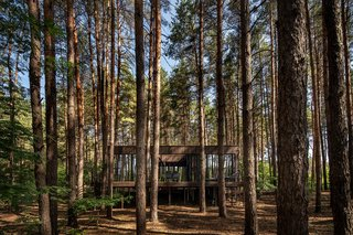 These Mirrored Forest Cottages in Ukraine Reflect the Great Outdoors