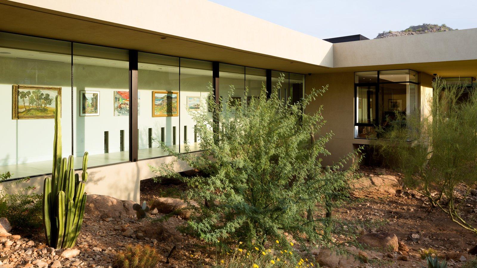 Outdoor, Back Yard, Trees, Flowers, Desert, Shrubs, and Walkways  Desert Wash