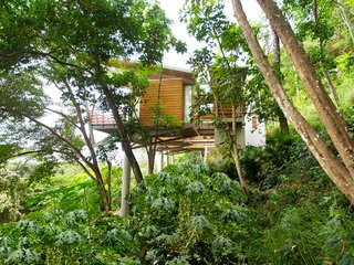 "The ""Floating House"" in Santa Teresa, Costa Rica, consists of living pods that float above the forest floor, connected by flying bridges that hover over the landscape."
