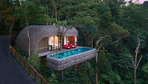 The bird's nest pool villa suspended in the trees.