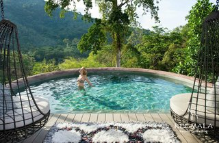 Relax in the private pool extending from the Tree Pool House.
