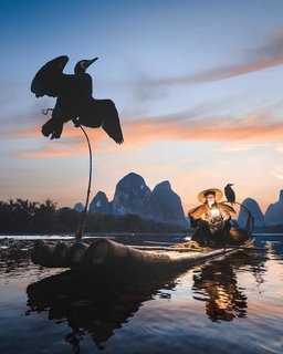 Grandpa Huang fishing on the Li River in Guangxi, China.