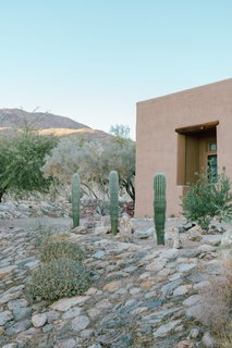 Outside, Young incorporated decomposed granite, native plant species, and large date palms. She moved a lot of rocks around to add to the natural desert feel she wanted for the property.
