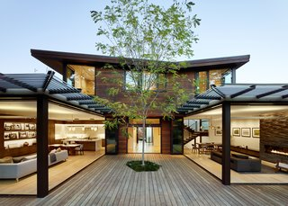 A single tree in the courtyard anchors the central space surrounded by Southland Windows & Doors glass walls.