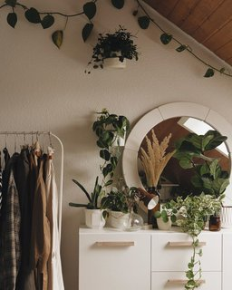 10 Plant-Filled Abodes You Should Follow on Instagram Right Now