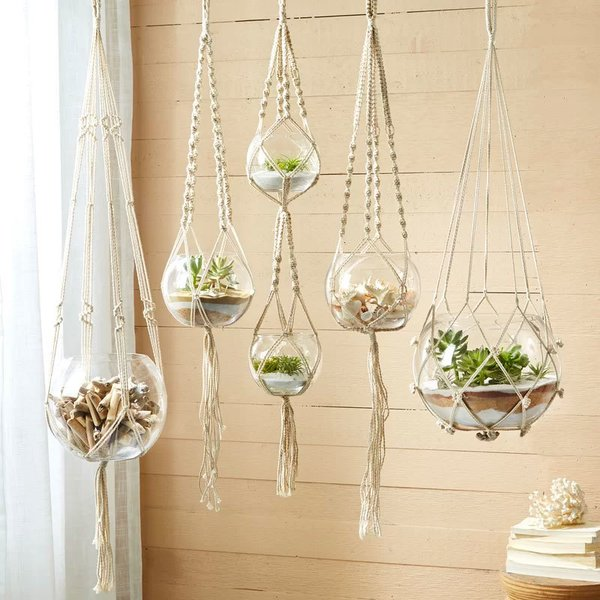Bungalow Rose Stephenson 5 Piece Glass Hanging Planter Set
