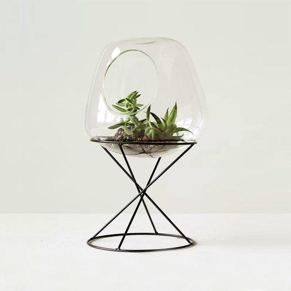 Cogburn Glass Terrarium