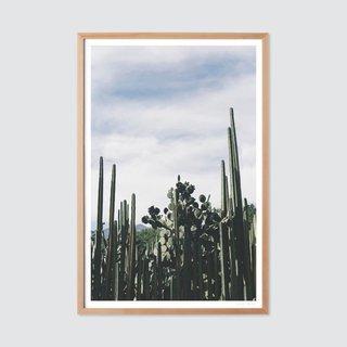 Oaxaca 0.3 by Andrew Shepherd Print