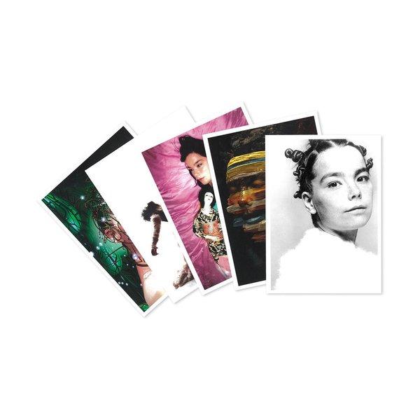 Bjork: Box of 16 Postcards