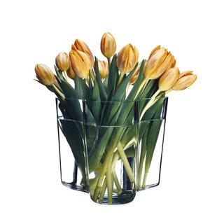 Iittala Aalto 160mm Savoy Vase