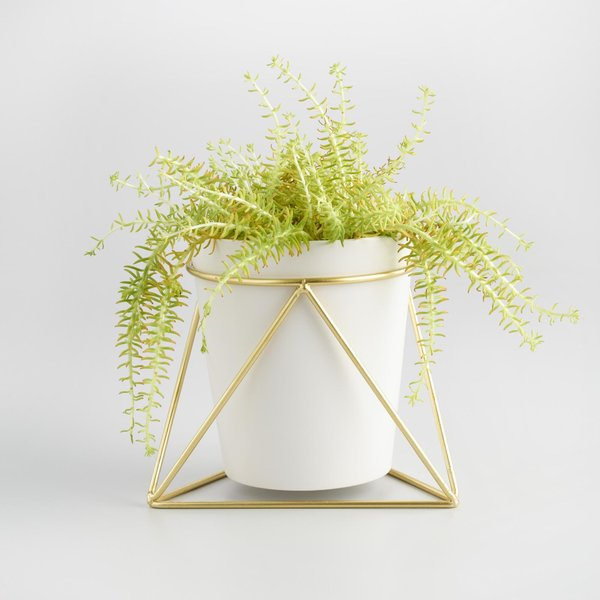 World Market Gold Geometric Stand and White Vase