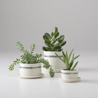 Schoolhouse Banded Porcelain Planter