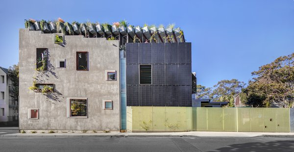 An Architect's Home in Sydney Is a Masterful Lesson in Sustainable Design