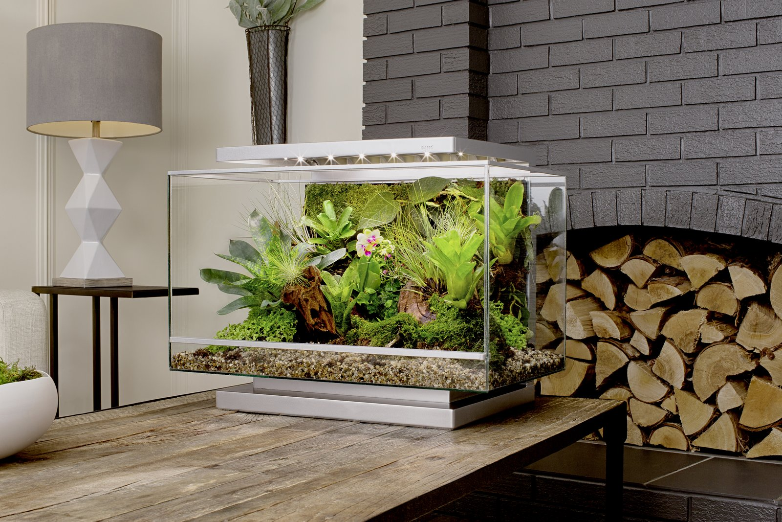 Photo 9 of 10 in Clueless About Gardening? These 5 Smart Planters Can Help