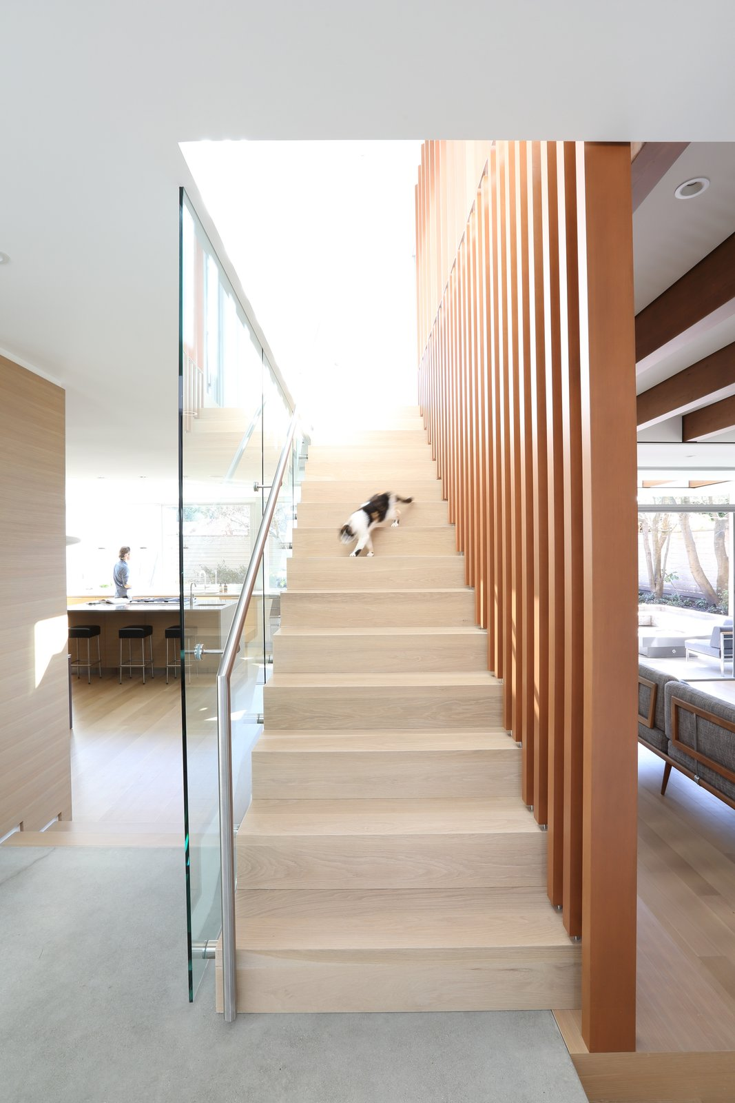 Staircase, Wood Tread, and Metal Railing Stair  The Edge House