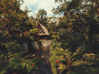 This Serene Bamboo Bungalow Rental Is a Slice of Paradise in Bali - Photo 1 of 14 -