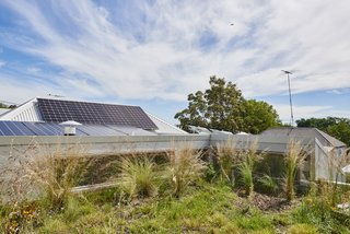 The green roof by FytoGreen helps reduce stormwater runoff and increases biodiversity.