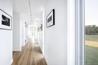 The main corridor, punctuated with full-height glazing, doubles as an art gallery.