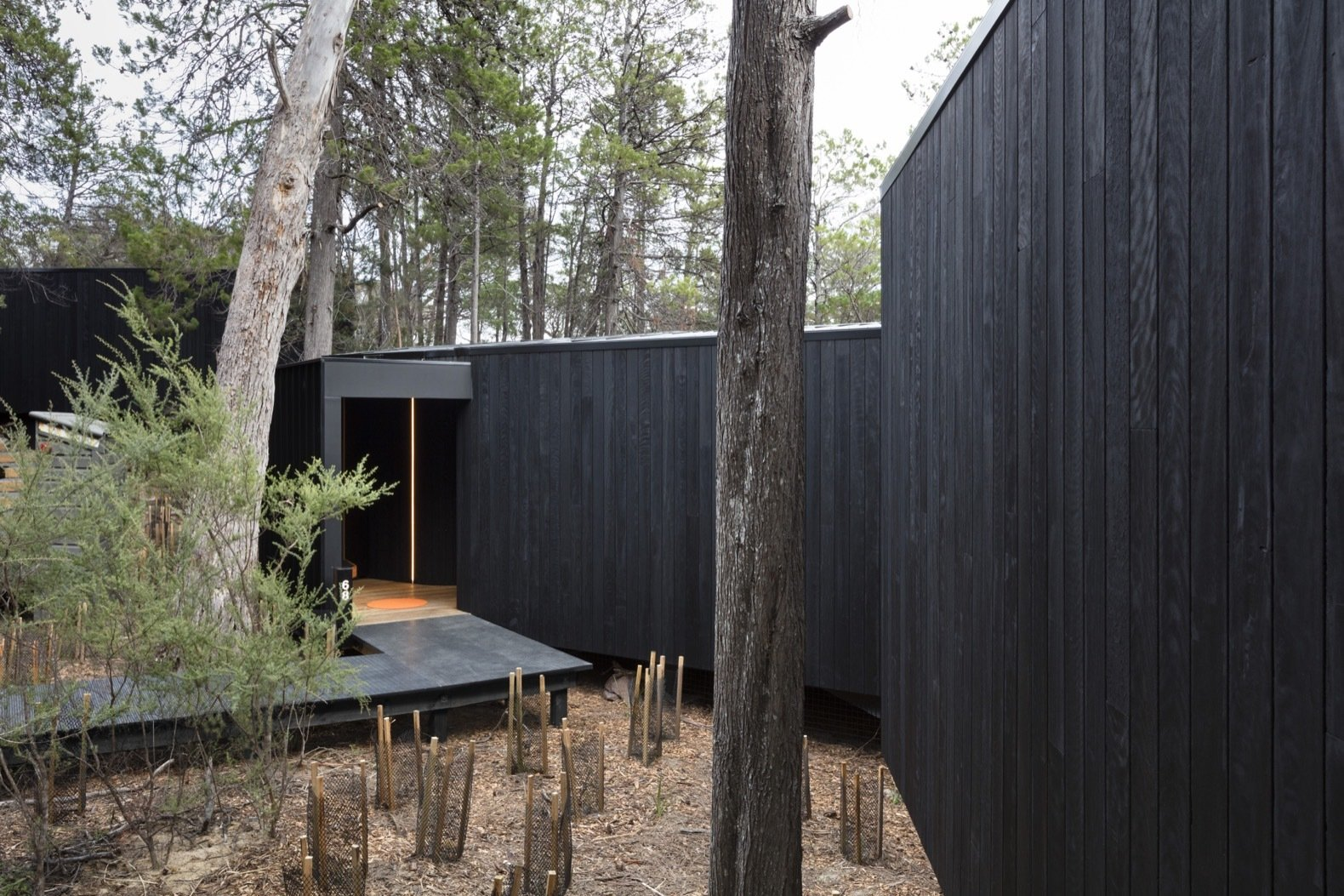 The exterior Red Ironbark cladding was charred—using the Shou Sugi Ban technique—to increase the longevity of the timber and as a nod to the significance of fire.  Photo 2 of 13 in Escape to the Wilds of Tasmania in These Eco-Minded Pavilions