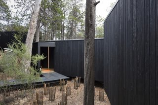 The exterior Red Ironbark cladding was charred—using the Shou Sugi Ban technique—to increase the longevity of the timber and as a nod to the significance of fire.