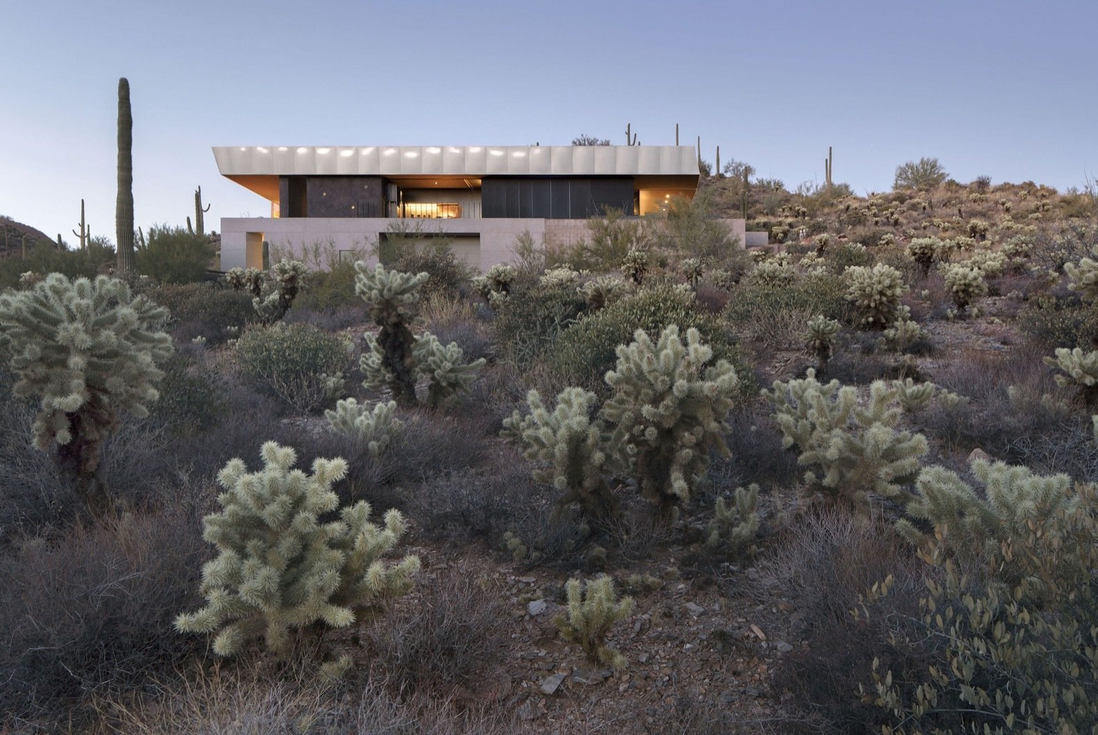 """A teddy-bear cholla field growing out of a prominent out-crop of pinkish-red shale stone, which is found running along the entire eastern edge of the site,"" say the architects."