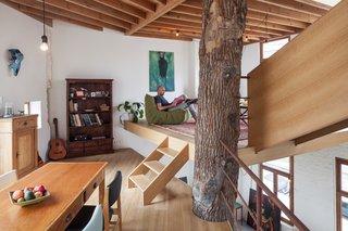 """""""The column had to be affordable and nice to look at,"""" note the architects. """"So we bought a tree and put it right in the middle of the building. Between the tree and the facade, we have created new floors which are built in a spiral around the tree. This results in a very dynamic and open space."""""""