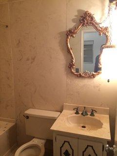 Before: A peek inside the hall bathroom.