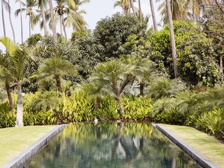 The pool abuts a lush, tropical environment. The lot is nearly three acres in size.