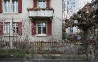 Here, the cat ramp spans the gap between the tree and the balcony.