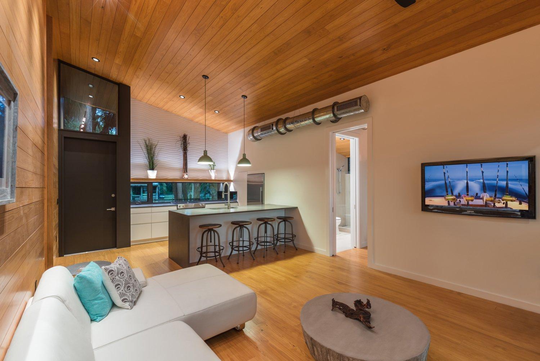 Living Room  Mike's Hammock by Josh Wynne