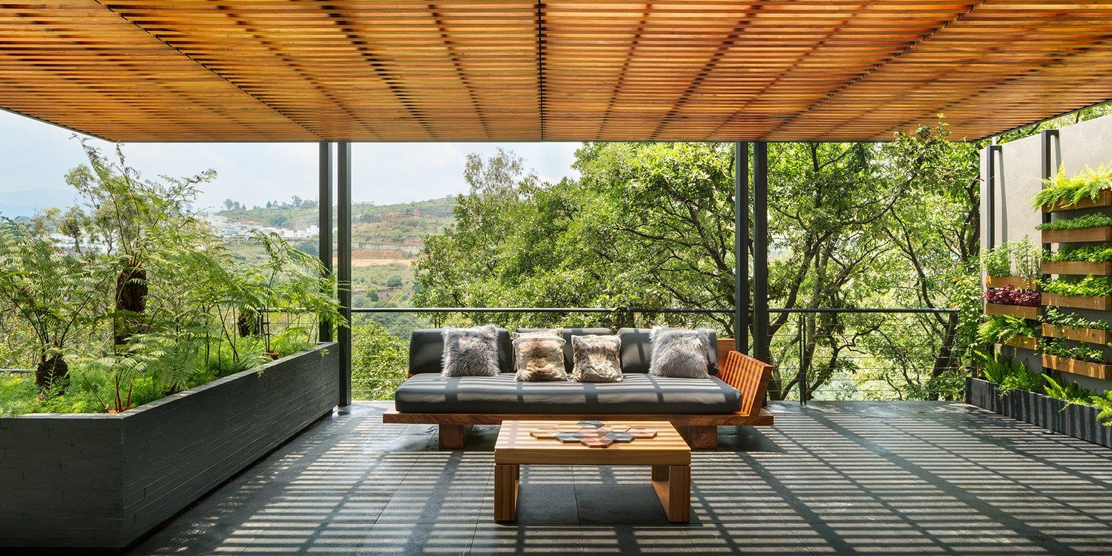 Outdoor, Trees, Shrubs, and Rooftop  Villa Jardín by ASP Arquitectura Sergio Portillo