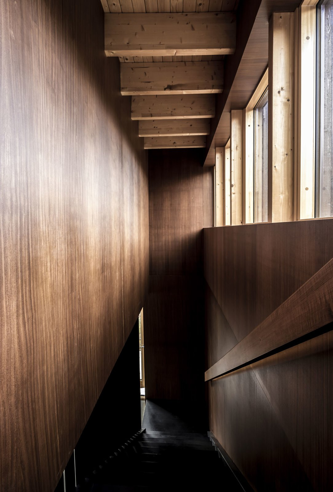 Staircase, Wood Tread, and Wood Railing  Woodland house