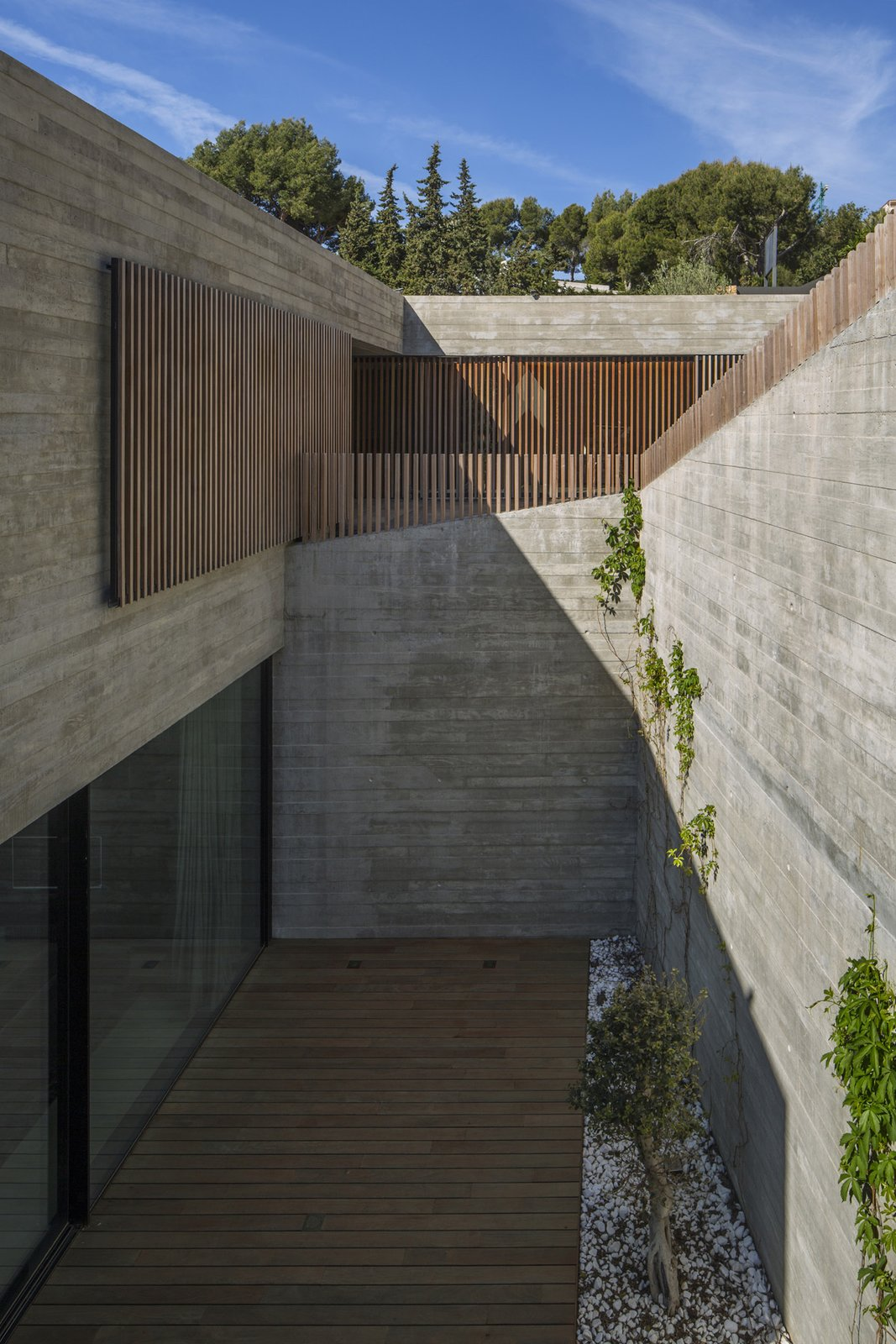 Outdoor, Trees, Wood, Concrete, Large, Back Yard, and Landscape  Best Outdoor Landscape Photos from Villa Boscana