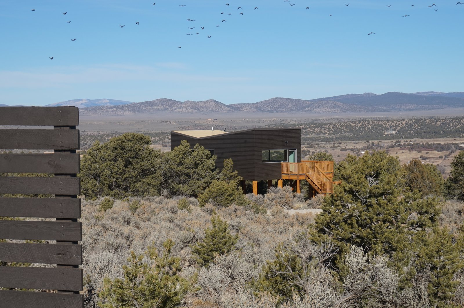 Exterior, Butterfly RoofLine, Wood Siding Material, Green Roof Material, and House Building Type  SkyNest by Joaquin Karcher