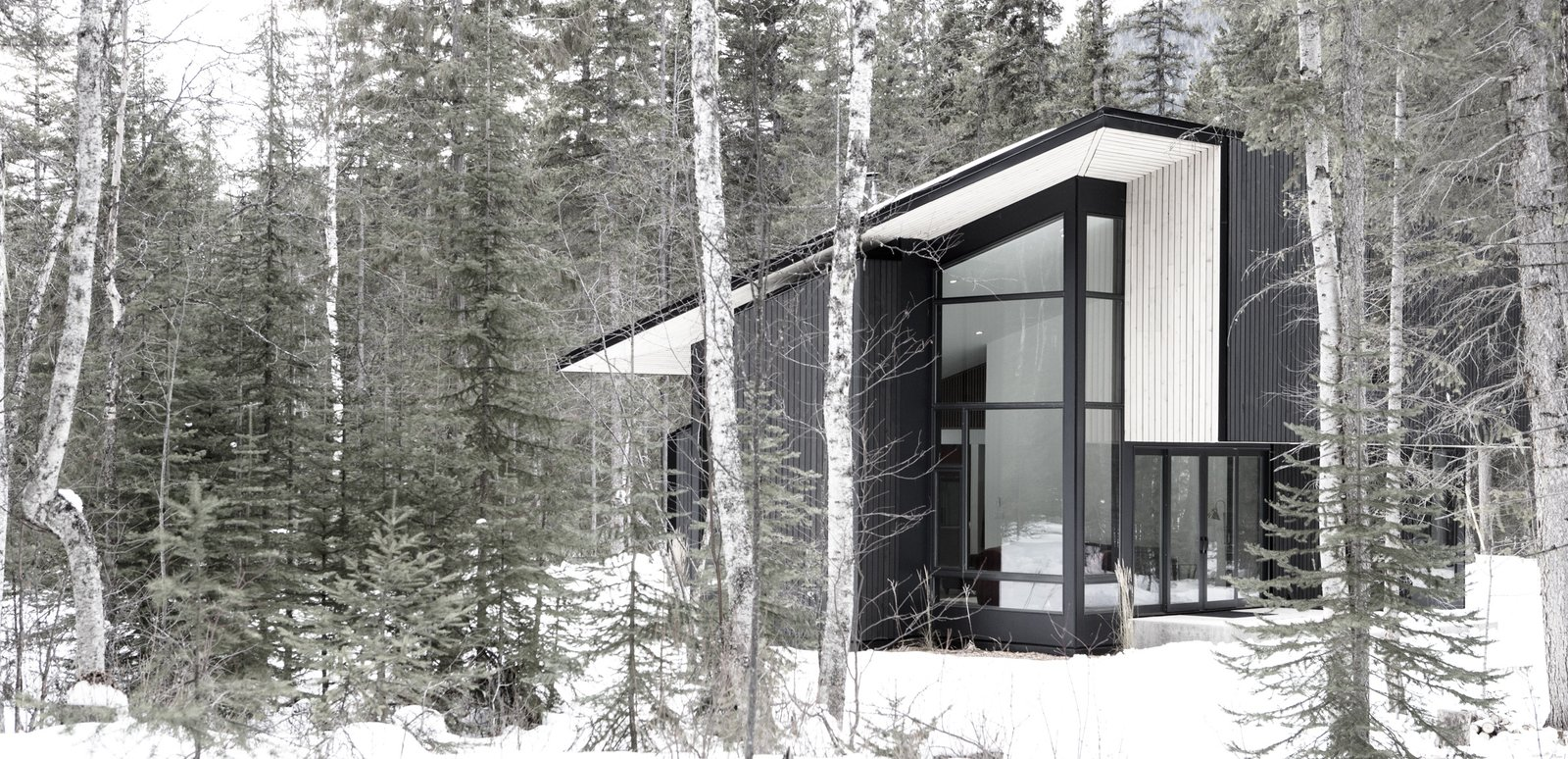 Exterior, Wood Siding Material, Cabin Building Type, Metal Roof Material, and Shed RoofLine  Pioneer Cabin