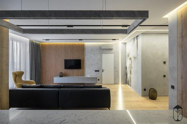 Best 60 Modern Living Room Light Hardwood Floors Design Photos And