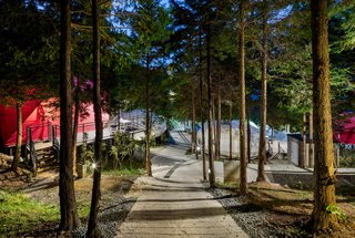 Nature is all around at this glamping resort, which is nestled in forests of cypress trees.