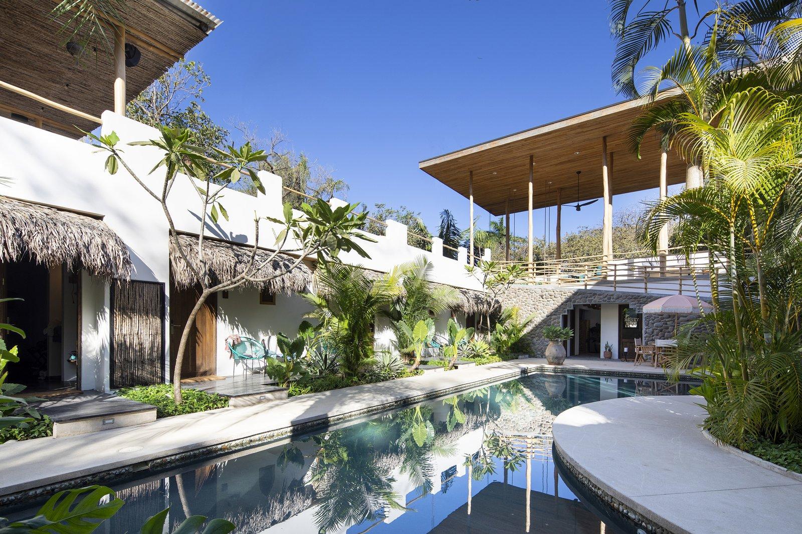 Outdoor, Large Pools, Tubs, Shower, Salt Water Pools, Tubs, Shower, Trees, and Gardens Pool  Nomadic Nosara