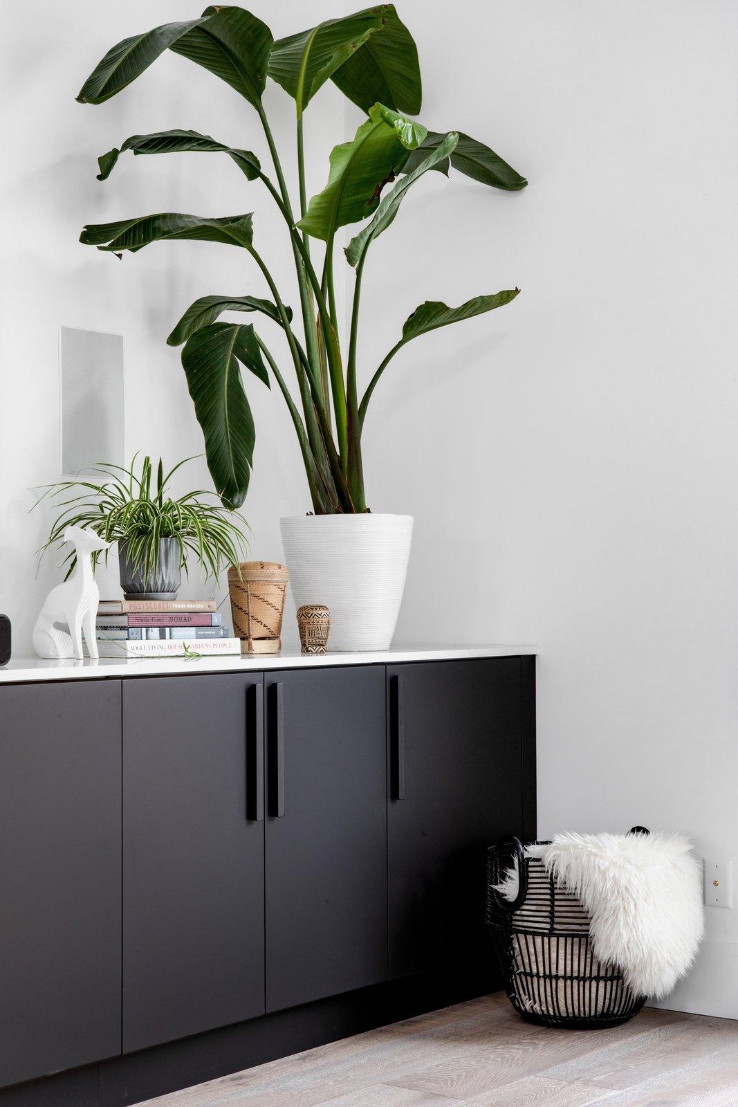 Living, Storage, Shelves, Media Cabinet, Medium Hardwood, and Ceiling  Best Living Medium Hardwood Storage Photos from Pleasant St. Urban Abode