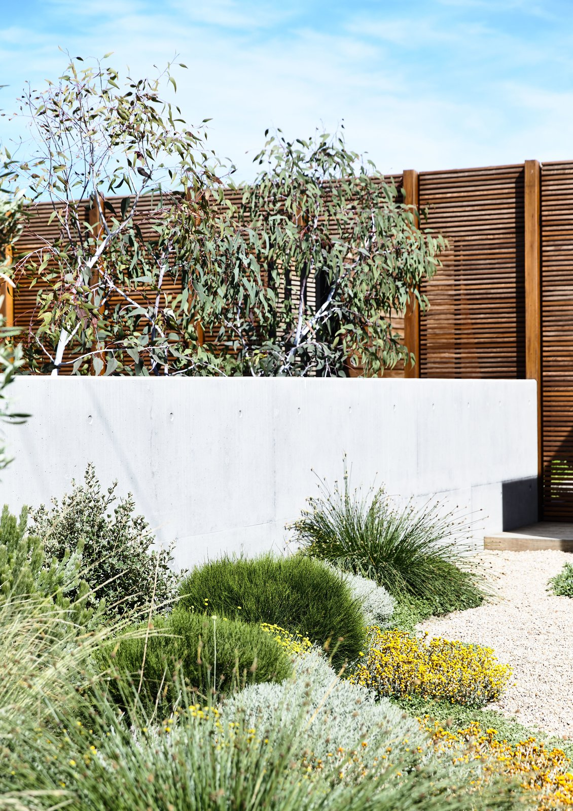 House Building Type, Wood Siding Material, and Beach House Building Type  DS House, Blairgowrie