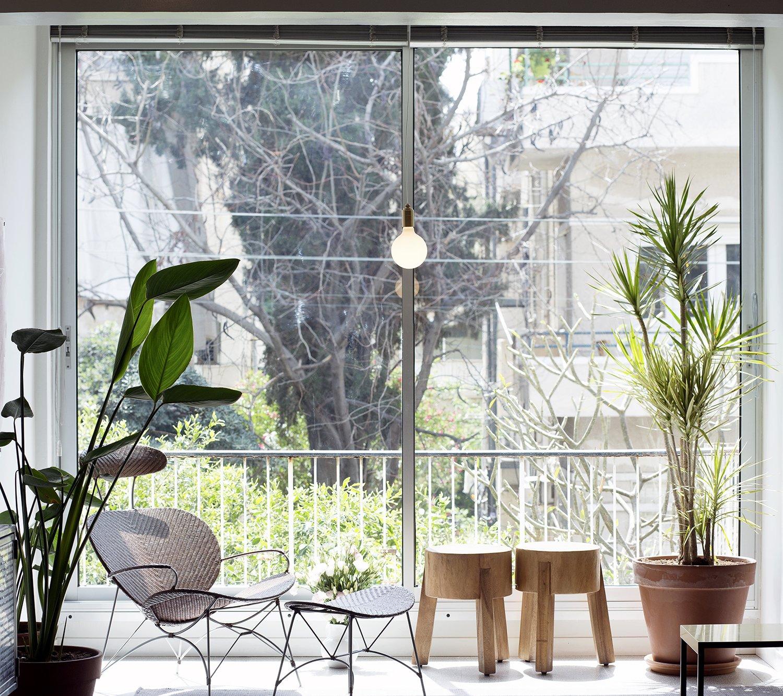 Windows, Metal, and Sliding Window Type  Nahmani Tel Aviv Apartment