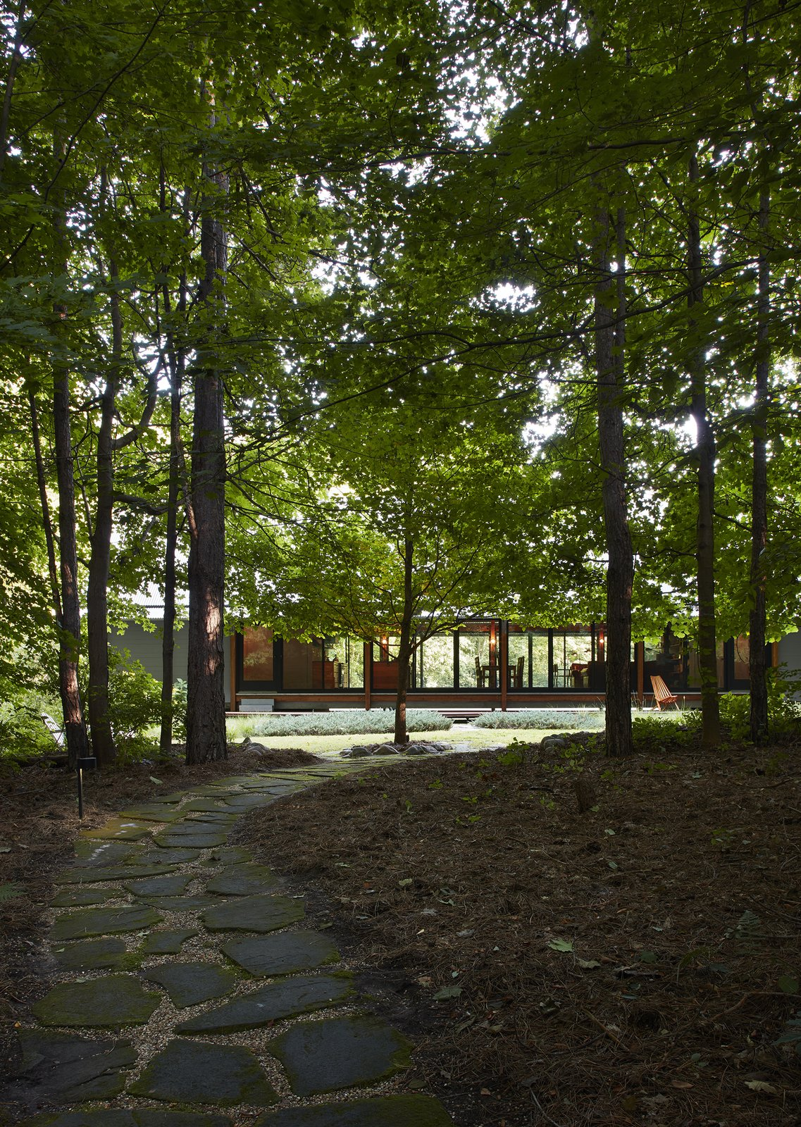 Outdoor, Walkways, Trees, Shrubs, Woodland, and Front Yard  Best Photos from Bohan Kemp