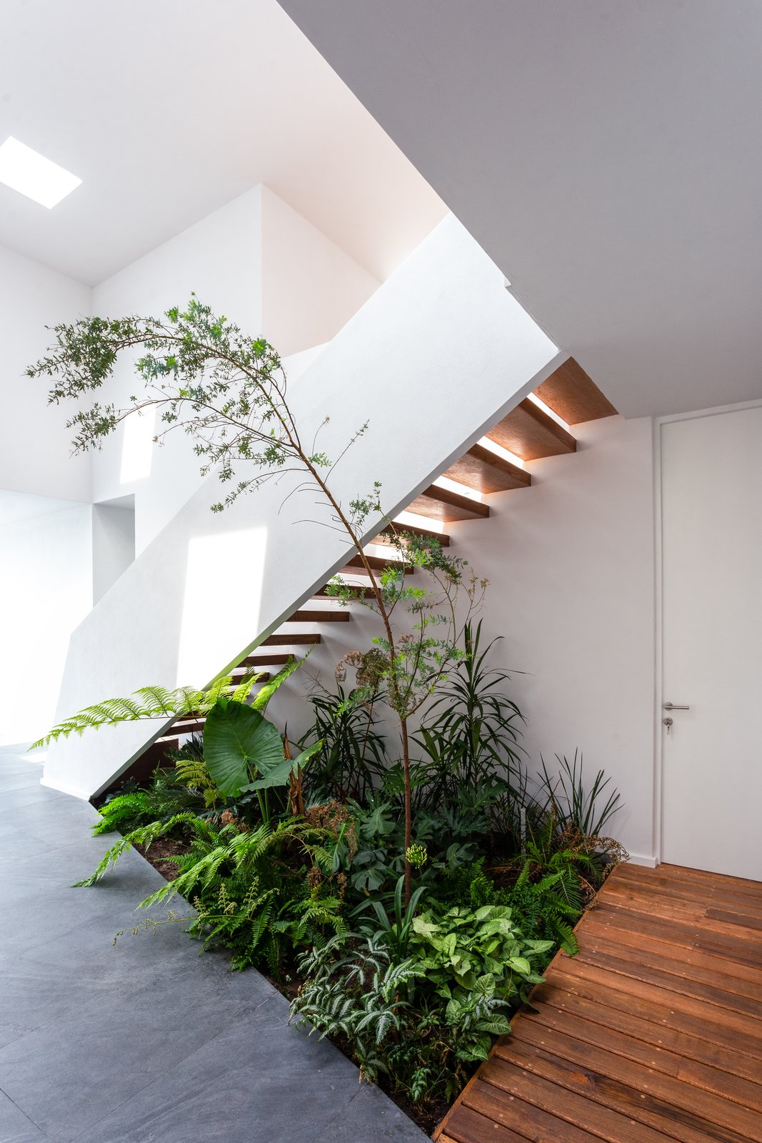Staircase, Stone, Wood, Wood, and Concrete  Staircase Wood Concrete Photos from San Antonio House